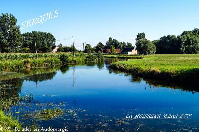 Balades en Audomarois (20)