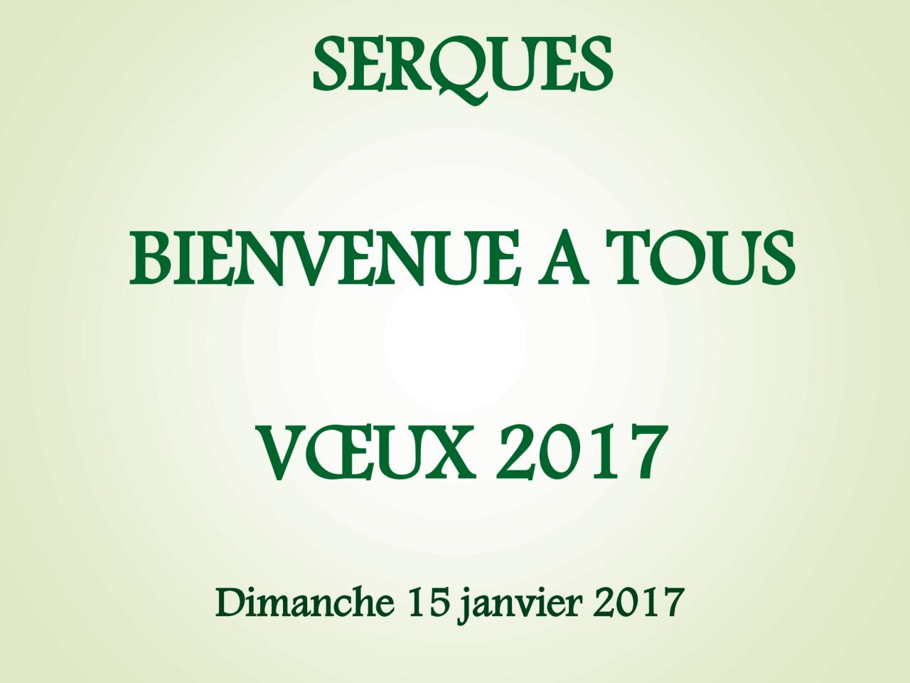 Voeux 2017 (1)