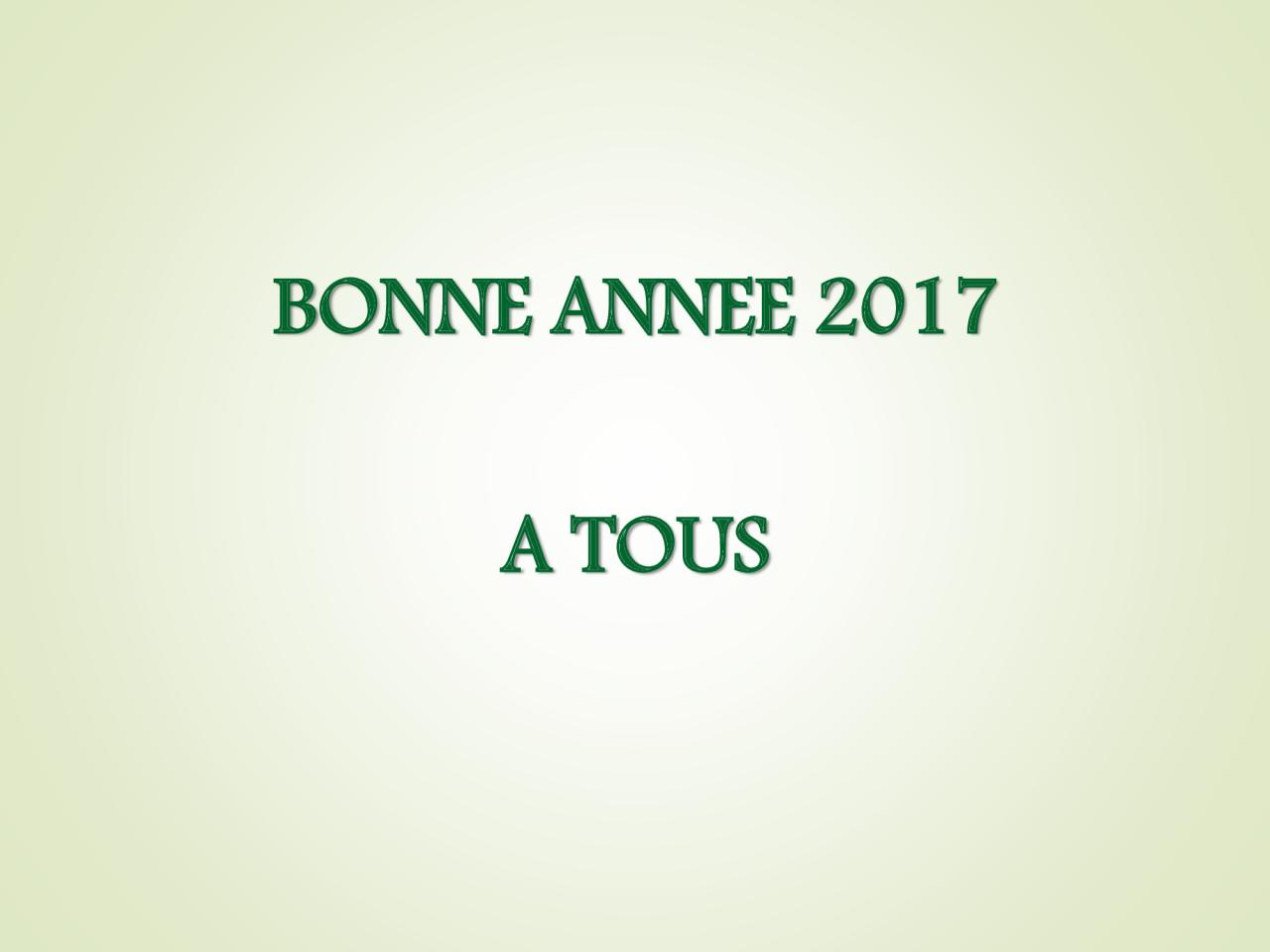 Voeux 2017 (117)