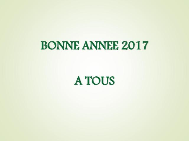 Voeux 2017 (117)
