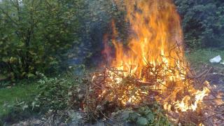 feu dechets verts
